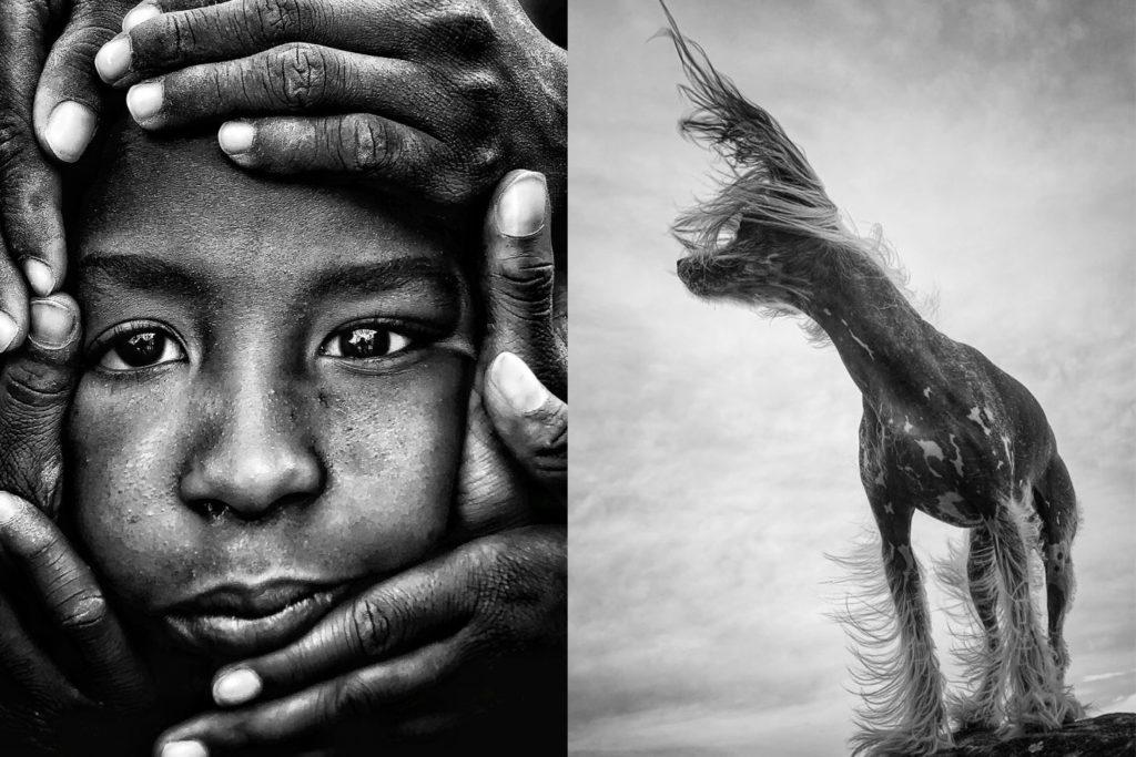 Voici les grands gagnants des iPhone Photography Awards 2021